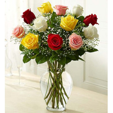 Rose Elegance Premium Long Stem Assorted Roses (12 Steam)
