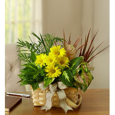 Jardim de prato com flores de corte fresco (pequeno)