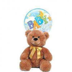 Teddy for Boy
