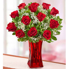 Blooming Love Premium Red Roses (12 Steam)