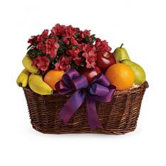 Cesta de Frutas e Flores (Padrão)
