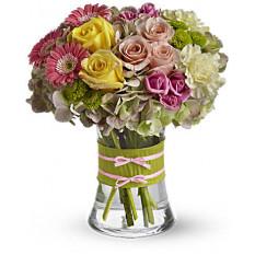 Fashionista Blooms (Standard)