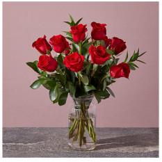 Red 1 Dozen Roses