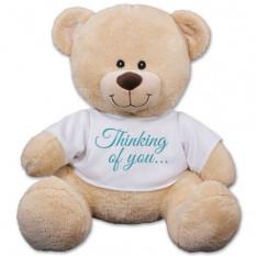 Pensando em você ursinho - 17 polegadas