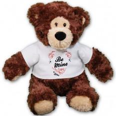 Ser personalizado meu urso de peluche - 11 polegadas