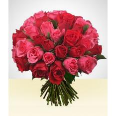 Par perfeito: 36 rosas Bouquet rosa e vermelho