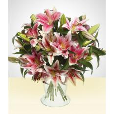 Seed Love: Pink Lilies in vase