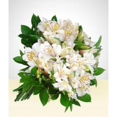 Amigável: Bouquet Branco Astromelias