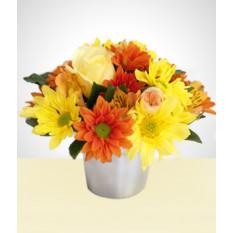Florista: Flores Selvagens