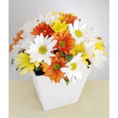 Floração: Margarida decorada
