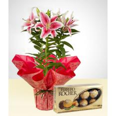 Pack: Flores e Você
