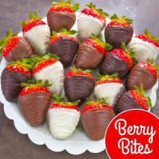 18 Berry morde os morangos cobertos de chocolate (tamanho do divertimento)