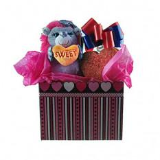Ouriço com conjunto de presente de Tote de biscoitos em forma de coração