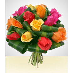 Dreaming Bouquet: 12 Rosas Multicoloridas