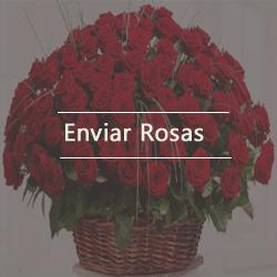 envie rosa